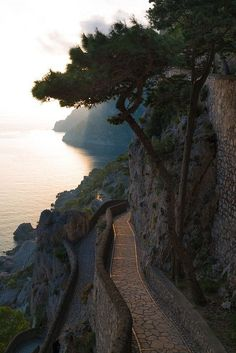 Via Krupp, Capri, Campania, Ital. One of my favorite trips ever.... great memories with great friends.