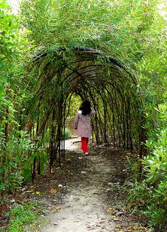 Inniswood Gardens In Columbus Oh | ... the sisters garden section of inniswood metro gardens in columbus ohio