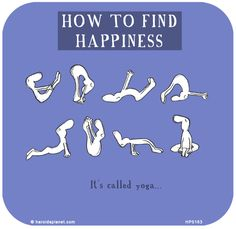 http://lastlemon.com/harolds-planet/hp5163/  HOW TO FIND HAPPINESS: It's called yoga