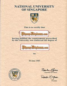 Ngee Ann Polytechnic Singapore Fake Diploma From Phonydiploma