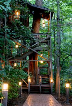 65 Ideas For Tree House Architecture Branches Beautiful Tree Houses, Cool Tree Houses, Beautiful Homes, Beautiful Places, Future House, My House, Tree House Plans, Tree House Designs, Forest House