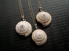 Shell Necklace Shell Pendant Gold Edged Shell by SinusFinnicus