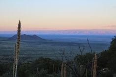 i scream for sunshine: aguirre springs, new mexico  http://www.iscreamforsunshine.com/2014/12/aguirre-springs-new-mexico.html