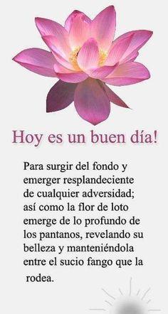 Flor de loto #frases #flordeloto #metanoia