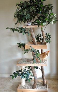 - Cats - a nature inspired cat tree of branches, fake greenery and platforms with pebbles. a nature inspired cat tree of branches, fake greenery and platforms with pebbles to make the cats feel like outdoors.