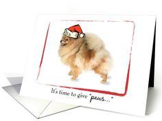 Pomeranian Dog Christmas card