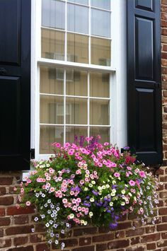 20 Beautiful Window Boxes To Make Your House Exterior More Wonderful Window Box Plants, Window Box Flowers, Window Planters, Window Boxes, Planter Boxes, Fall Planters, Balcony Flowers, Succulents In Containers, Container Flowers