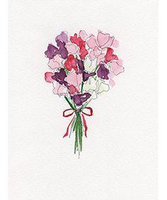 illustrations – Virginia Johnson