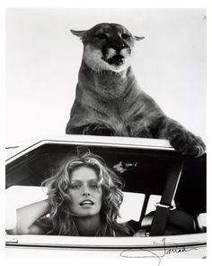 farrah fawcett ... Brought to you in part by StoneArtUSA.com ~ affordable custom pet memorials since 2001