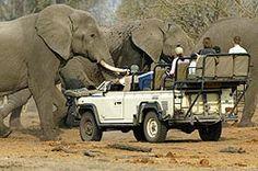 http://www.southerncircle.com/kruger-park-safaris.html