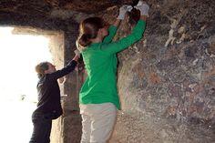 4300 సంవత్సరాల పురాతన పెయింటింగ్ http://www.teluguwishesh.com/190-andhra-headlines-flash-news/54566-4300-old-painting-found-near-giza-pyramid.html