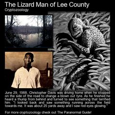 "The Lizard Man of Lee County   ""...upon changing his tyre he heard a thump from behind him and turned to see something that terrified him to his core. ""I looked back and saw something running across the field towards me. It was about 25 yards away and I saw red eyes glowing.""   Read more about this encounter here: http://www.theparanormalguide.com/blog/the-lizard-man-of-lee-county"