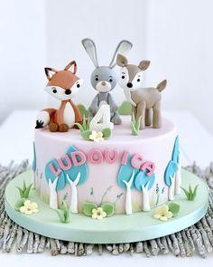 Animal Birthday, 2nd Birthday, Birthday Parties, Birthday Gifts, Fondant Figures, Sugar Art, Cakes And More, Baby Shower Cakes, Cake Cookies