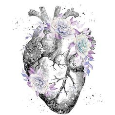 anatomical heart tattoos with flowers geometric - anatomical heart tattoos with flowers geometric Human Heart Tattoo, Heart Flower Tattoo, Flower Tattoos, Tattoo Floral, Heart Tattoos, Anatomy Tattoo, Anatomy Art, Heart Wallpaper, Iphone Wallpaper