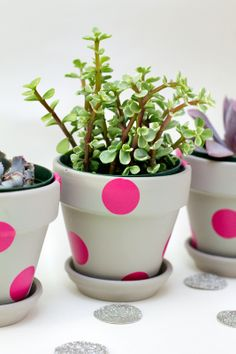 Easy Neon DIY Painted Flower Pots-Cute Spring Flower Pots Decoration Ideas