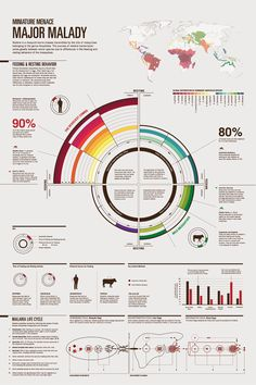 FINAL_InfoDesign1_ForWeb