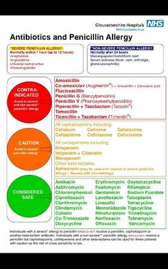 Antibiotics Penicillin Allergy poster .. what to avoid if you are truly…