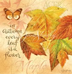 In Autumn every leaf is a flower.