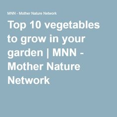 Top 10 vegetables to grow in your garden | MNN - Mother Nature Network