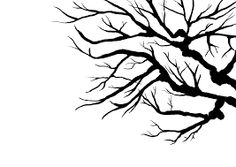 leafless tree outline - Google Search