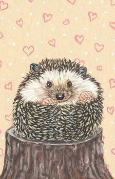 Hedgehog Acrylic Painting 5 x 7 by SavageArtworks on Etsy
