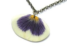Real Blue and White Pansy real petal necklace by AhoyAhimsa