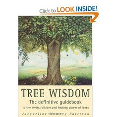 Tree Wisdom: The definitive guidebook to the myth, folklore and healing power of Trees: Amazon.co.uk: Jacqueline Memory Paterson: Books