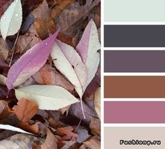 Autumn Color Palette - Fall Colors - Autumn Wedding - Color Inspiration
