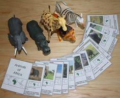 Montessori Zoo Unit. Jocs de memòria i atenció