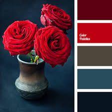 scarlet color palette - Cerca con Google