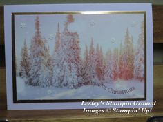 Lesley's Stampin Ground : Feels Like Frost Specialty Designer Series Paper Stampin Up Christmas, Christmas Cards To Make, Xmas Cards, Christmas 2019, Christmas Crafts, Snowflake Cards, Snowflakes, Stamping Up Cards, Thanksgiving Cards