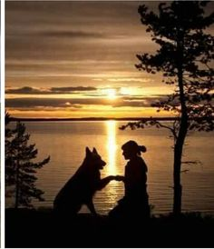 Sunset with your best friend...