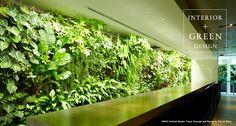 parkERs |グリーンを活かした空間デザイン、オフィスの室内緑化ならパーカーズ | WORKS