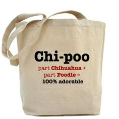 May need to get one of these.  I have a Chi-poo.