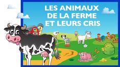 Kindergarten Classroom, Kindergarten Activities, Preschool, Farm Animals, Outdoor Activities, Family Guy, Animation, Learning, Funny