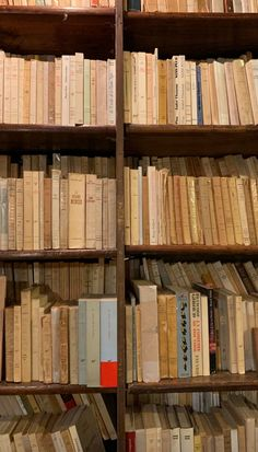 Book Aesthetic, Aesthetic Pictures, Aesthetic Clothes, I Love Books, Books To Read, Herbst Bucket List, Bookshelves, Bookcase, Study Motivation