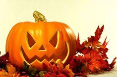 Kürbis für Halloween schnitzen                                                                                                                                                                                 Mehr