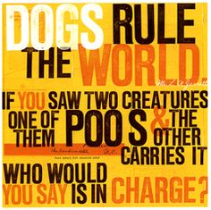 Never Looked At It That Way Funny Greeting Cards Dog Rules