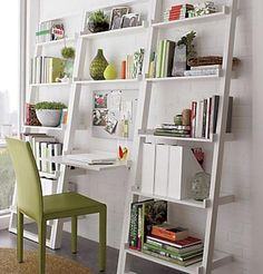 Love the look of these leaning bookshelves, but the designer obviously doesn't have cats.