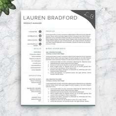 Resume Template For Job Seekers Professional Cv Template Resume