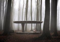 명상과 사색의 세레모니, Jägnefält Milton's Forest Pavilion tests new Swedish building law :: 5osA: [오사]