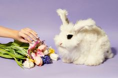 Paintbox's limited-edition negative-space Easter manis.