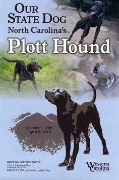 plott hounds