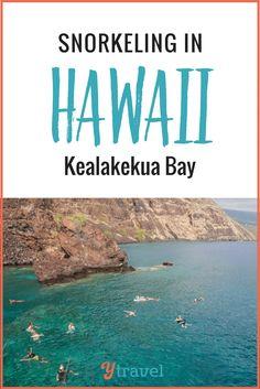 Hawaii Video - Snorkeling In Hawaii with Kids at Kealakekua Bay with Fairwind Cruises