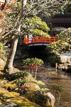 "Japaninfo added 14 new photos to the album: พิธียิงธนู ""Musha-shinji""@ศาล Kamigamo-jinja/Kyoto 16 ม.ค — at 上賀茂神社."