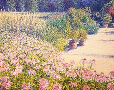 Coneflowers, Botanical Garden - Oslo Oil on linen, 40 x 50 cm Painted by Tore Hogstvedt Pointillism, History Museum, Claude Monet, New Series, Oslo, Natural History, Impressionist, Botanical Gardens, Conservation
