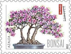 bonsai art, bonsai postage stamps