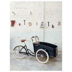 Johnny Loco Cruiser - Cargo Bike - Cargobike - triciclo - family bike | eBay Cargo Bike, Bike Style, Bike Fashion, Motorcycle, Ebay, Vehicles, Tricycle, Tricycle Bike, Motorcycles