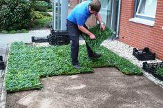 Kant-en-klare bodembedekkers in plantenmatten voor een direct resultaat. Met plantenmatten gaat u onkruid duurzaam te lijf. Nu te koop bij Haagplanten.net!