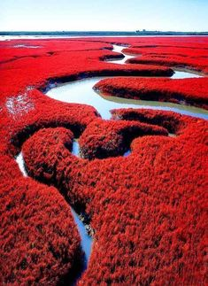 Image result for amazing chinese landscape photography